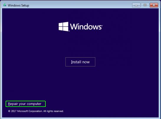 Windows 10 Advanced Option